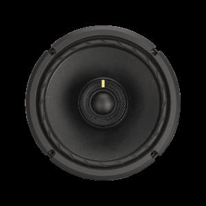 C-Series Convertible Speaker System